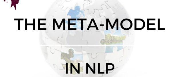Meta Model di NNLP